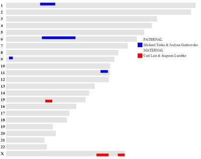 Click for full version.Do your own here: http://kittymunson.com/dna/ChromosomeMapper.php